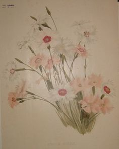 pink flowers  no. - 19