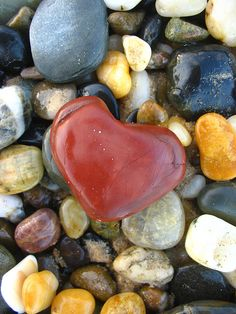 Heart Stones. My husband and I collect them and put them in an antique jar and box.
