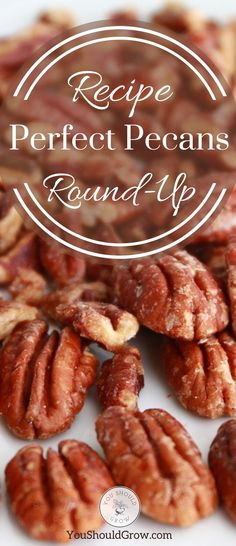 45 Sweet and Savory Pecan Recipes - Healthy Pecan Recipes - Pecan Recipes, Sweet Recipes, Real Food Recipes, Dessert Recipes, Healthy Recipes, Healthy Fruits, Dessert Ideas, Yummy Recipes, Recipe For 10