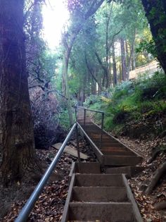 Hiking in Marin. Climb staircases throughout the neighborhoods in Corte Madera. #norcal