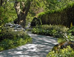 Sag Harbor landscaping (Past Projects) - Hamptons Landscaping / Summerhill Landscapes, Sag Harbor NY (631) 725-0005