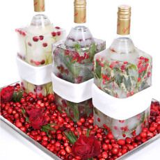 martha stewart, frozen vodka. put vodka in a juice container (cut off top) fill with lemons, cranberries, herbs. add water, freeze, and wrap a napkin around the middle for holding.