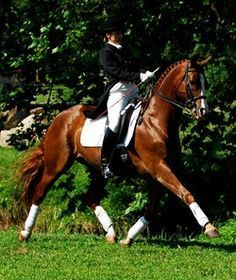 Great article on sitting straight in the saddle by Nancy Wesolek-Sterrett: Meredith Manor Dressage Department