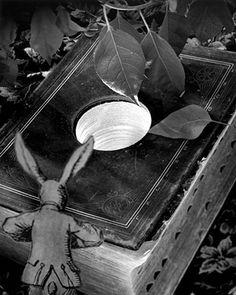 Abelardo Morell Alice in Wonderland, Down the Rabbit Hole, 1998 Gelatin Silver Print Photography Series, Artistic Photography, White Photography, Adventures In Wonderland, Alice In Wonderland, Charles Simic, Alice Rabbit, Thinking In Pictures, Gelatin Silver Print