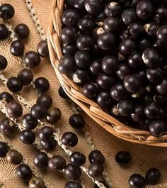 20 Amazing Benefits And Uses Of Acai Berries (Karvandha) For Health, Skin, And Hair Acai Benefits, Benefits Of Berries, Health Benefits, Acai Fruit, Acai Berry, Health Facts, What Is Acai, Herbal Weight Loss, Ideas
