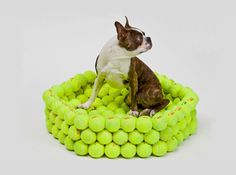 Sofa para perros con pelotas usadas