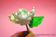 Curso Gratuito de Flores de Azúcar: Paso a paso. Magnolia de pasta de goma. Flor Magnolia, Pasta Flexible, Sugar Flowers, Evergreen, Peonies, Cake Decorating, Magnolias, Herbs, Plants