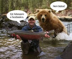 Look at My Big Fish! Why Are You Running Away? Bear Hunting Photobomb: This guy is in for a big surprise and will probably shit in his pants in 3 2 Animals And Pets, Funny Animals, Cute Animals, Funniest Animals, Animal Fun, Wild Animals, Animal Pictures, Funny Pictures, Funny Pics
