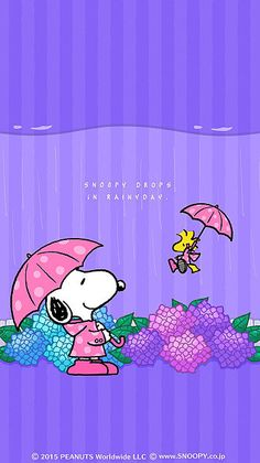 rainy day snoopy w/woodstock Snoopy Images, Snoopy Pictures, Peanuts Cartoon, Peanuts Snoopy, Snoopy Wallpaper, Iphone Wallpaper, Snoopy Und Woodstock, Snoopy Quotes, Snoopy Christmas