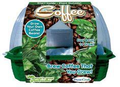 Dunecraft Sprout 'n Grow Coffee Science Kit DuneCraft http://www.amazon.com/dp/B007BDGGF2/ref=cm_sw_r_pi_dp_A-Wxwb0FT27B2