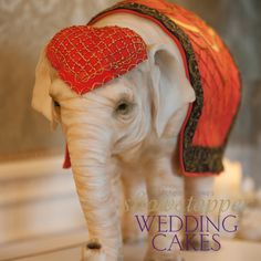 Try creating realistic cake sculptures in your own kitchen like this Indian Wedding Elephant by Michelle Wibowo