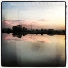 Rice fields by mastroste on Instagram
