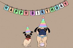 Pug birthdays