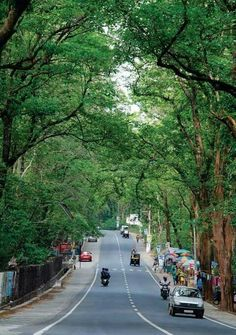 Welcome to Nilambur natural place Vintage Filter App, Vintage Filters, Arabian Sea, Exotic Beaches, Cute Couples Photos, Paradise On Earth, Hill Station, Kerala, Waterfall