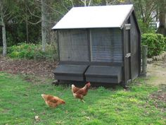 Outpost 2 Bay Hen House - comes as a kitset delivered NZ wide. This one has been painted with a dark wood stain.