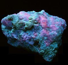 "Afghanistan Hackmanite Winchite -  UV  fluorescent minerals From Afghanistan comes this 3.5"" wide specimen.  Contains:Hackmanite (FL Pink)Winchite (FL Blue)  Shown in white light."