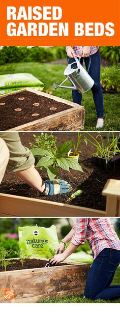 There is so much versatility in what you can grow when you bring a raised garden bed into your yard. You can grow both underground root vegetables like carrots and tall plants like tomatoes. This may be the perfect way to gain some experience before you e Vertical Herb Garden, Tall Plants, Raised Garden, Garden Projects, Planting Flowers, Plants, Garden, Lawn And Garden, Indoor Herb Garden
