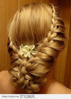crown hair styles 93 best hair images on in 2018 hairstyle ideas 5367