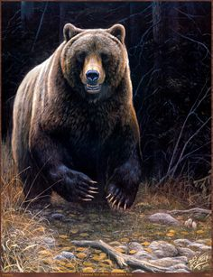 Diy Diamond Painting Black Bear Full Square Cross Stitch Crystal Mosaic Partial Embroidery Fabric Home Decoration Needlework Wildlife Paintings, Wildlife Art, Animal Paintings, Animal Drawings, Bear Pictures, Animal Pictures, Bear Spirit Animal, Bear Drawing, We Bear