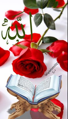 Wallpaper Nature Flowers, Beautiful Nature Wallpaper, Beautiful Gif, Allah Calligraphy, Islamic Art Calligraphy, Islamic Images, Islamic Pictures, Allah Islam, Islam Quran