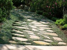 My California Garden In Zone Exquisite Stone Path, Dymondia Silver Carpet Silver Carpet, Sloped Backyard, Deck With Pergola, Patio Roof, Pergola Shade, Pergola Ideas, Garden Stepping Stones, Garden Steps, Garden Paths