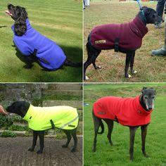 Polartec Fleece Polo Neck Dog Coat - Rainproof, Breathable, Warm and Washable Dog Suit, Dog Clothes Patterns, Doggy Stuff, Polo Neck, Dog Coats, Dog Accessories, Sadie, Puppies, Warm