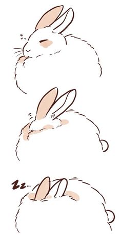 how to draw a fluffy bunny