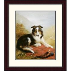 Global Gallery 'A Collie, the Guardian of the Flock' by Edwin Douglas Framed Painting Print Size: