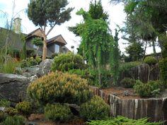 Broom Universe 2  Valenta Garden