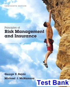 Using financial accounting information the alternative to debits principles of risk management and insurance 13th edition rejda test bank test bank solutions fandeluxe Images