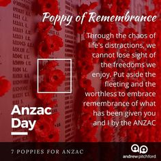 7 Poppies for ANZAC - The Poppy of Remembrance rounds out our lessons of Anzac to see that we will forget unless we learn to remember. Anzac Day, Poppy, Freedom, Forget, Community, Learning, Life, Liberty, Political Freedom