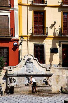 Cooling Off at a Fountain in Plaza de Santa Ana Granada Spain