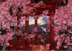 Cherry blossoms,  Mount Fuji,  Japan,  Red,  Wallpaper