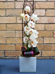 Calypso Flowers - Arrangements Cymbidium orchid - a single stem