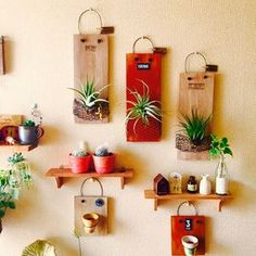 etc Example of interior - 29 Plant Crafts, Plant Projects, Garden Projects, Succulent Gardening, Succulents Diy, Pottery Painting Designs, Air Plant Display, 3d Quilling, Terrarium Plants