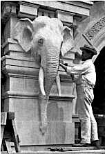 """Alexander Phimister Proctor at work on the Elephant House at the Bronx Zoo—now Wildlife Conservation Society. WCS is digitizing scrapbooks of the zoo's wild and woolly first director, William Temple Hornaday, who installed a drawing studio for animaliers like Gustav Manz to sketch his star attractions up close and personal. The papers have already been combed by historian Greg Dehler for his new bio of Hornaday """"The Most Defiant Devil""""..."""