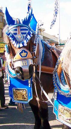 Haufbrau Horses at Oktoberfest