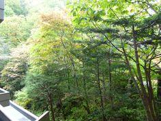 "Giardino di ""Takinoie""(Hotel), Noboribetsu-Onsen(Terme), Hokkaido Japan"