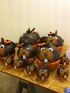 Beaver pumpkins!