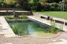 'The Natural Look' + Other Hot Pool Trends to Beat the Winter Blues | Chestnut Park Real Estate