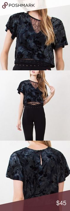 Velvet & Lace Crop Top This velvet abstract printed short sleeve crop top is to die for!! Features a lace underlay for a romantic touch. 92% Polyester, 8% Spandex. Brand new, multiple sizes available! Not Topshop, listed for exposure. Topshop Tops Crop Tops
