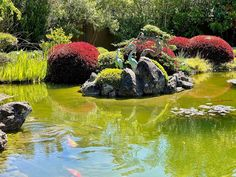 Leaning in to the wonders of the week and staying ever-present for the manifestation of every good thing. Meditation Garden, Organic Facial, Light Of Life, Sonoma County, Create Space, Spa Day, Monday Motivation, Curiosity, Wisdom