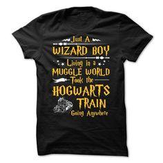 #tshirtsport.com #besttshirt #Wizard Boy  Wizard Boy  T-shirt & hoodies See more tshirt here: http://tshirtsport.com/