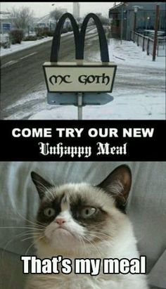 This Offering Pleases Grumpy Cat! » Unhappy Meal - Grumpy Cat » KnowYourMeme.com