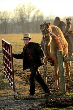 Amish camel farmer in PA photographed by Gary Clark
