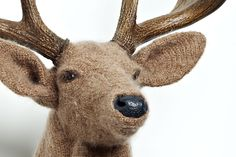 crochet taxidermy... need this for my cabin!