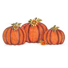 Harvest Metal and Mesh Pumpkins - 15