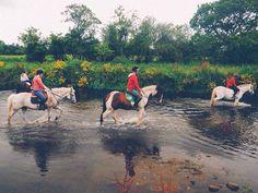 Montando a caballo (Thurles 2016)  Thurles:  Un programa de Inmersión con chicas y chicos irlandeses.Con talleres de teatro ecología y medio natural.  Thurles es una ciudad vibrante y próspera que cuenta con una población de 7.700 habitantes. Está situada en el norte de Tipperary. #WeLoveBS #inglés #idiomas #Irlanda #Ireland #Thurles  #Jóvenes #adolescentes #summer #young #teenagers #boys #girls #city #english #awesome #Verano #friends #group #anglès #cursos #viaje #travel #Love #horse…