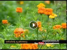 Ratheesh Babu, success story of Flowe and vegetable Farming | Onam 2016