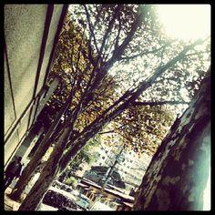Photo by micampioni • Instagram